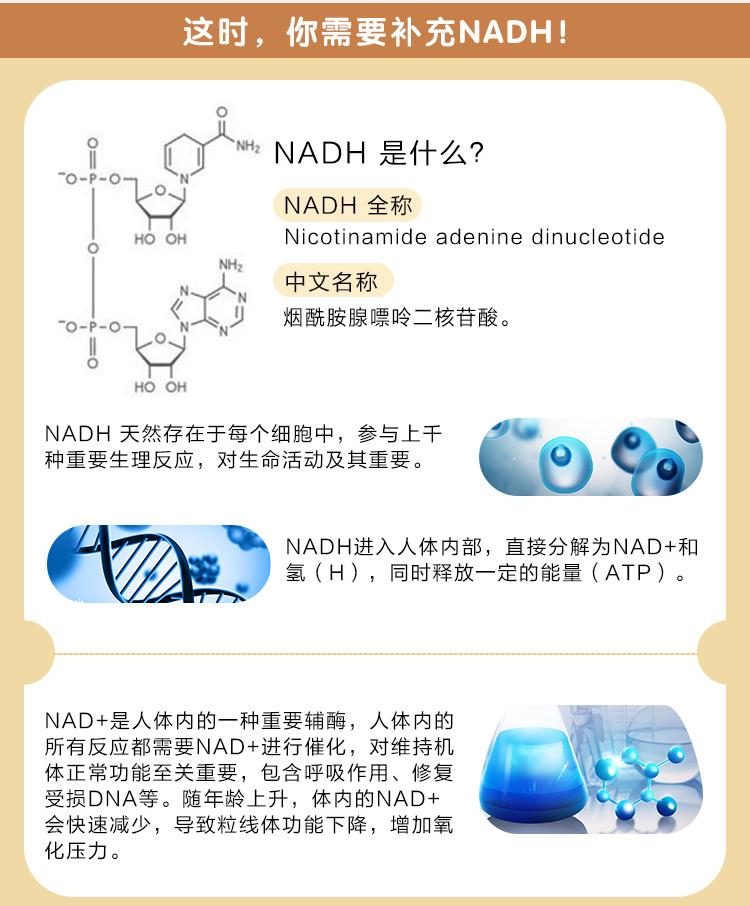 维您Panmol NADH酵母压片糖果